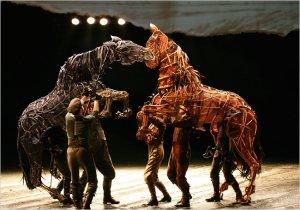 Horse1650