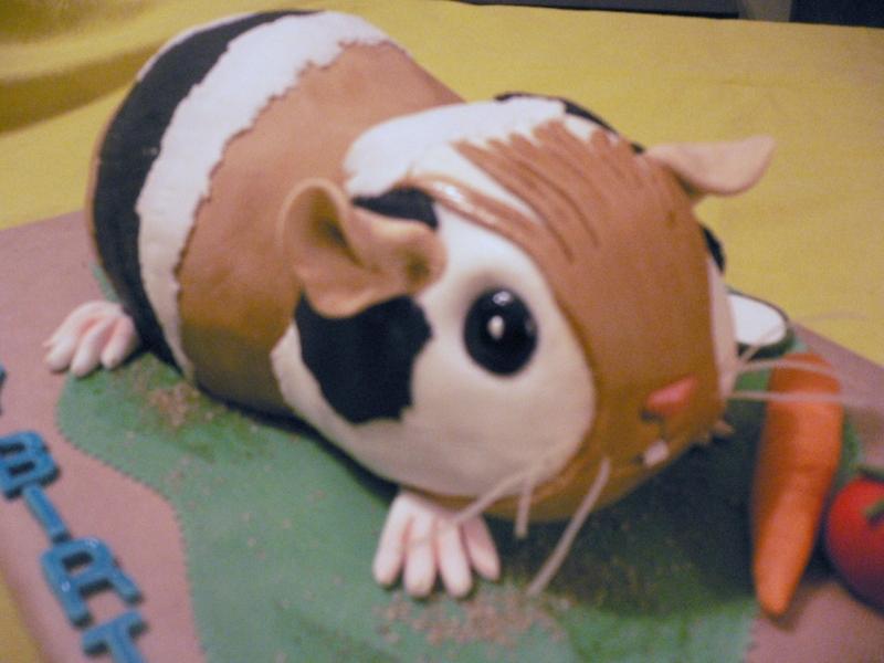 Chinchilla Birthday Cake