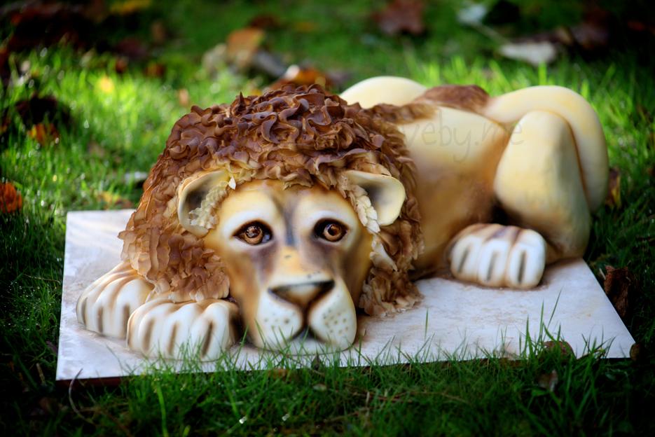 Lion-LR