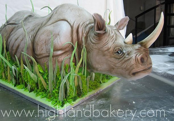 rhinocake